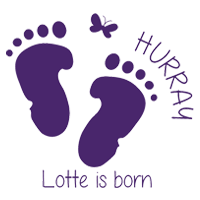 Birth Announcement Window Sticker